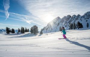 Ski Ogden
