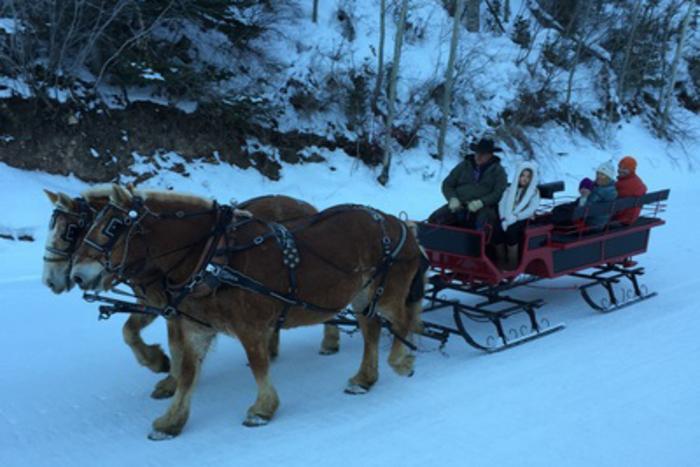 Park City Horse Drawn Sleigh Rides