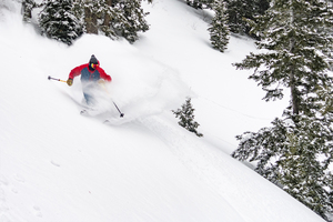Powder Mountain Locals Program