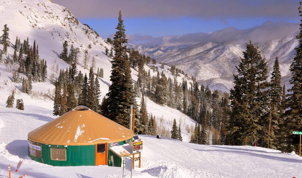Activities Yurt