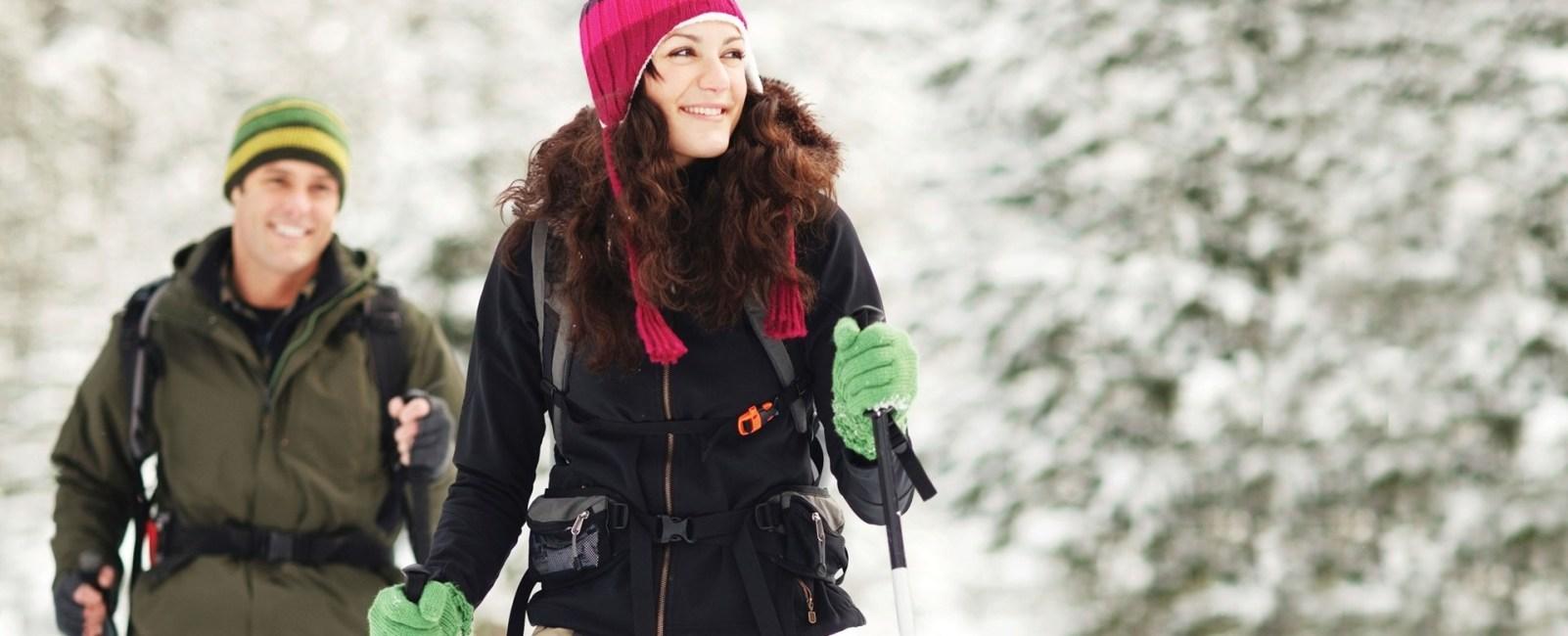 Snowbird Snowshoeing