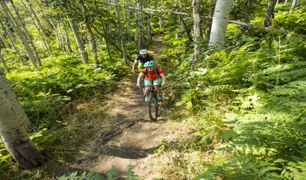 Sundance Trails