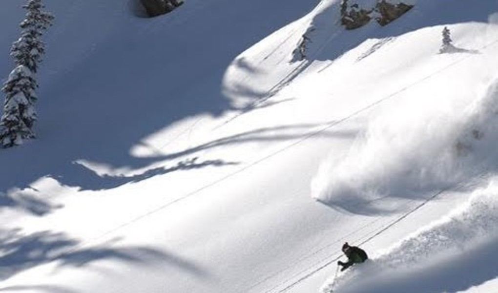 Alta Skiing