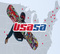 United States of America Snowboard And Freeski Association | USASA